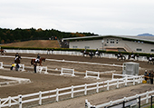 Gotenba Horsemanship and Sports Center