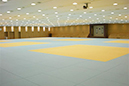 Indoor training center Judo thumb02